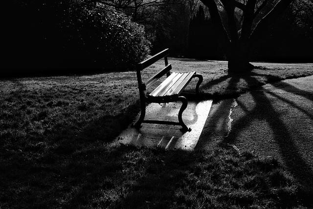 Park bench #4