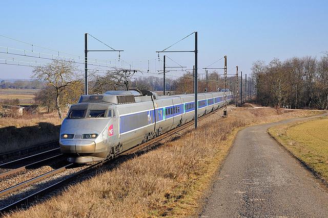 TGV Sud-Est à Morey-Saint-Denis