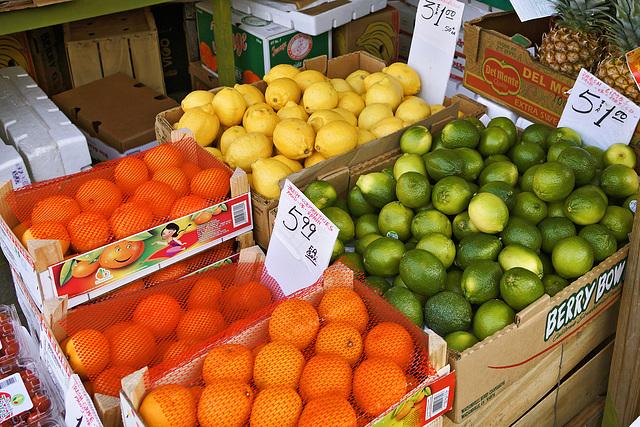 Still Life with Citrus – Baldwin Street at Augusta Avenue, Toronto, Ontario