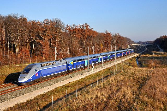 Euroduplex et couleurs d'automne
