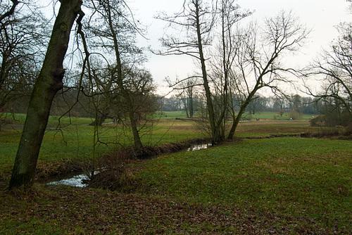 Winterlicher Jenischpark. Dezember 2013