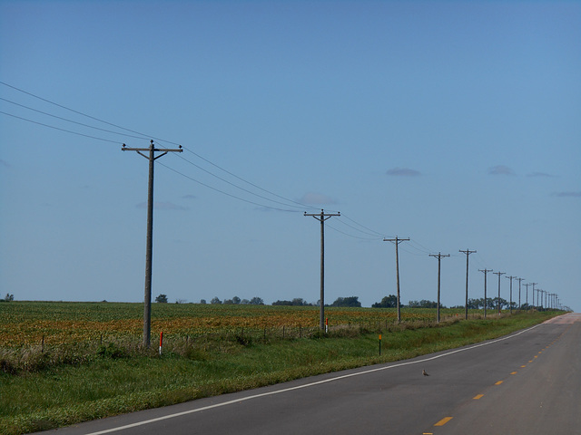 Northern States Power - Marion, SD (rural)
