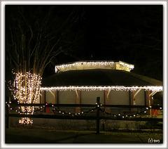 Carousel Christmas . .