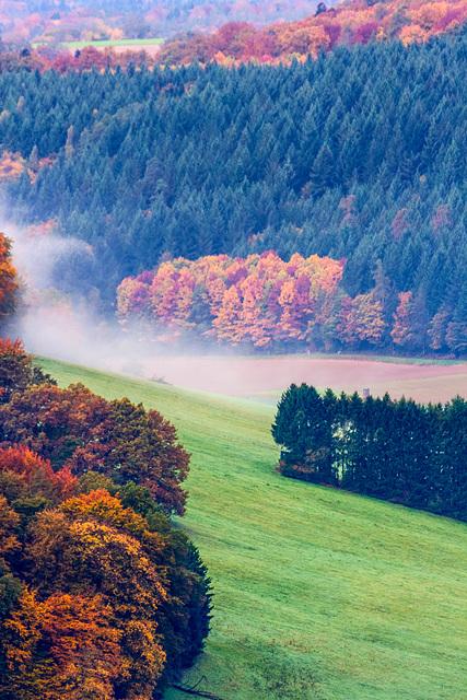 Colors of Fall - Herbstfarben I (270°)