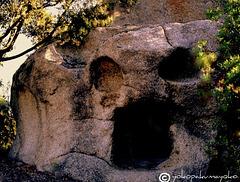 The skull....Neolithic Sardinia.