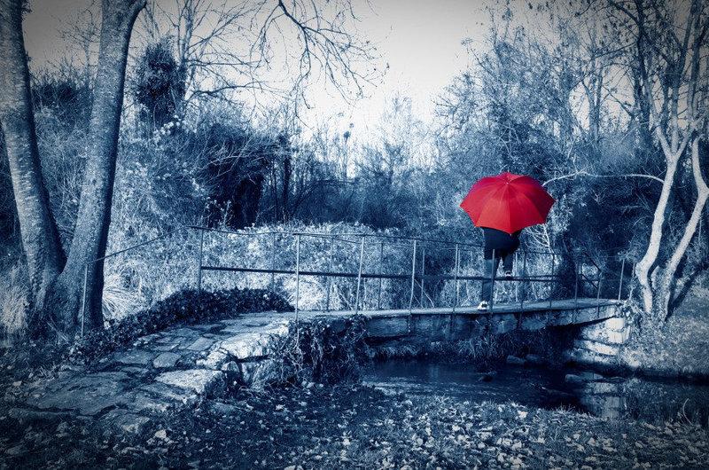 L'île au parapluie rouge...........