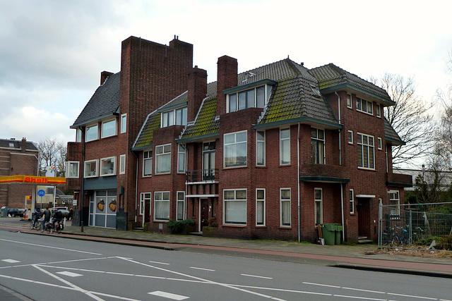 Houses on the Hoge Rijndijk