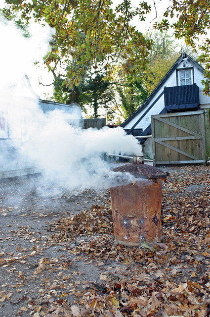 Autumn is here, time to start clearing leaves