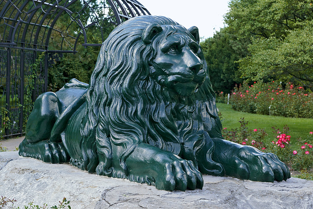 A Lion with the Blues – Botanical Garden, Montréal, Québec