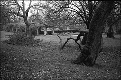 Ruskin Park London SE5.