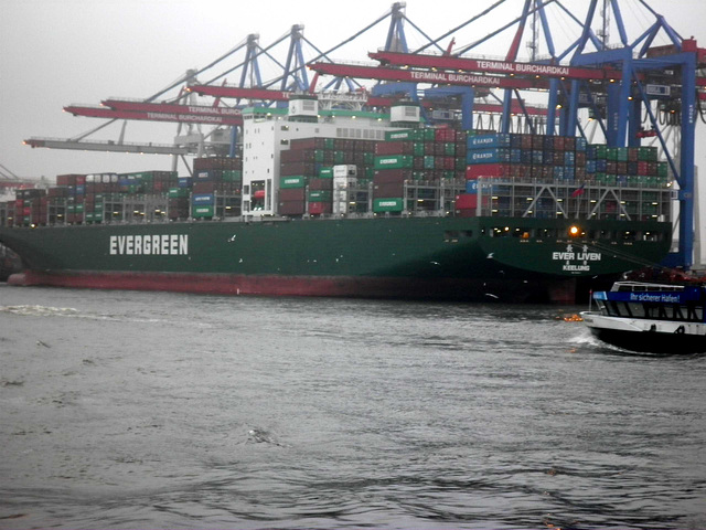 Containerschiff  EVER  LIVEN