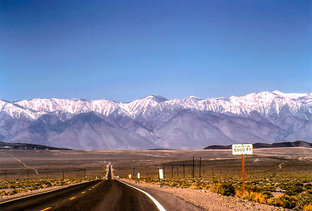 Elevation 5.000 ft ... California Route 190 and High Sierra near Lone Pine , June 1980 (285°)