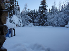2014-2-8 North Pole Good moening! 012