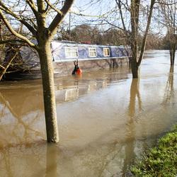 flood jan 2014 (1002)