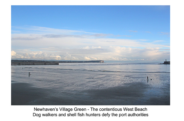 West Beach defiants - Newhaven - 30.1.2014