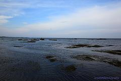 Pointe de Mousterlin_Bretagne 2