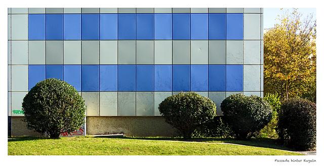 Grüne Kullern vor blau-weißer Fassade