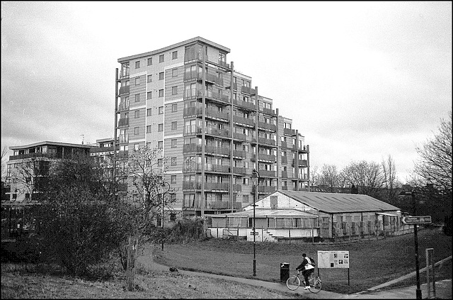 Flats from Burgess Park.