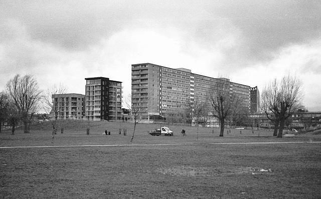Flats from Burgess Park. London SE.