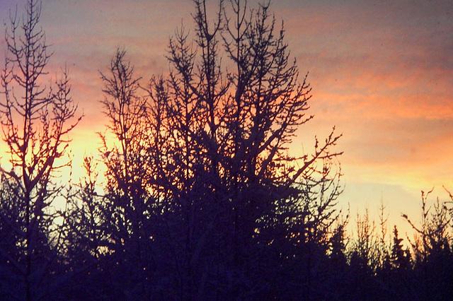 Alaska sunset