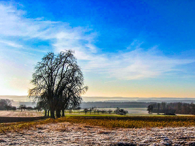 Eiskalter Morgen (180°)
