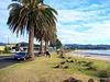 On Mercury Bay shoreline