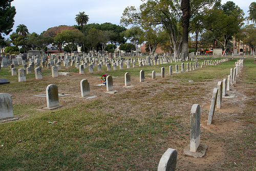 Angelus Rosedale Cemetery (3882)