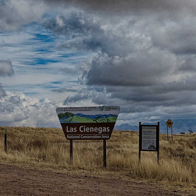 The Las Cienegas National Conservation Area
