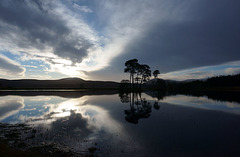 Loch Dubh at dusk, Ardross, Scottish Highlands