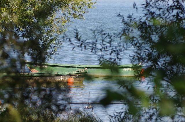 ballade sur les bords de Saône