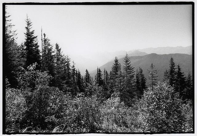 Mt. Walker West View