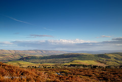 Stiperstones View