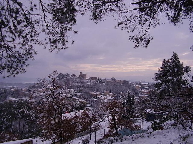 Venelles sous la neige 8-1-2011 (8)