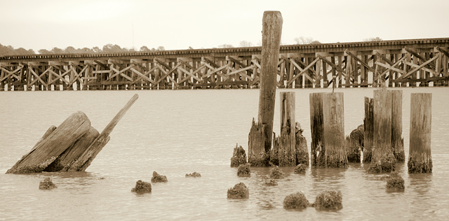 Pilings and bridge, Neuse River