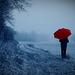 Parapluie rouge........