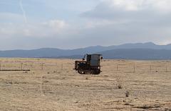 Carrizo Plain Natl Mon (0908)