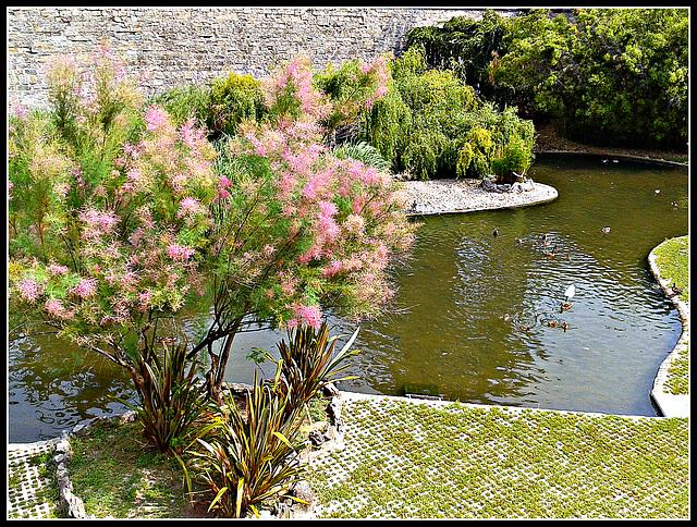 Pamplona: estanque de La Taconera