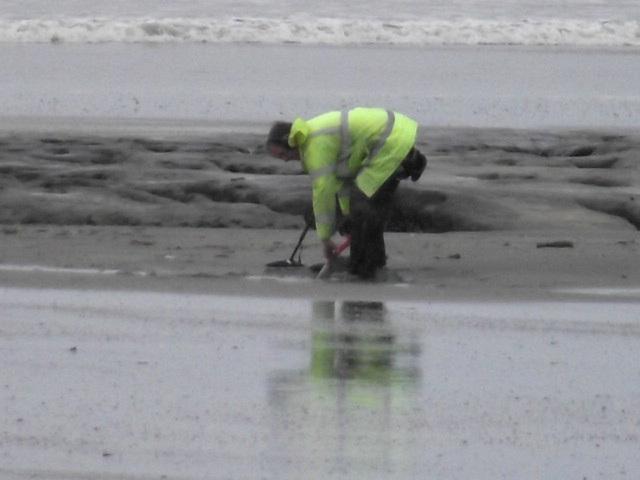 A metal prospector digging away