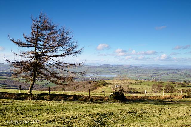 Shropshire from Blakemoregate.