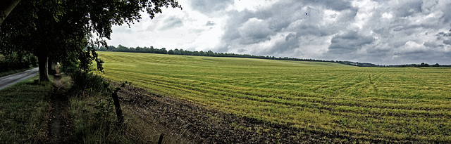 View over Wanborough field to Hogs Back Panorama