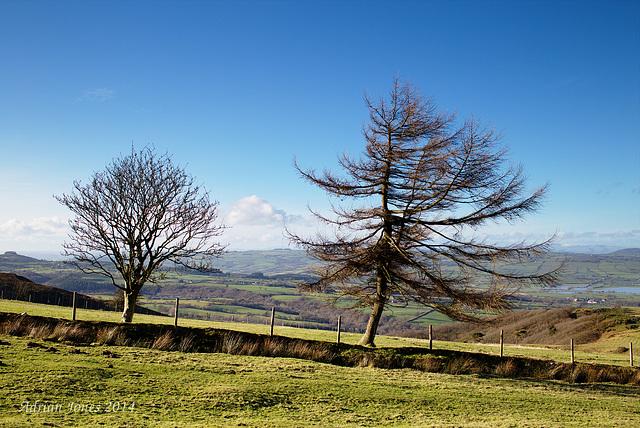 Blakemoregate View.