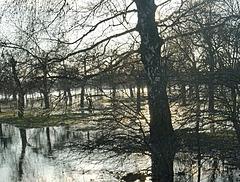 Lahn-Hochwasser