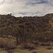 Long Canyon (01370)