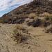 Long Canyon (01444)