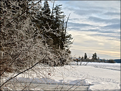 Jan 1, 2014 - No. 1 - One photo each day. -4 C
