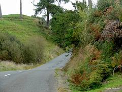 Up Huihuitaha Road