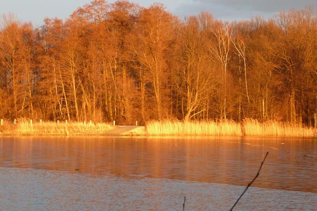 Goldene Abendsonne - ora vespersuno