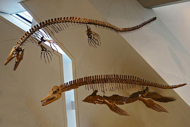 Gone Fishing – Royal Ontario Museum, Bloor Street, Toronto, Ontario