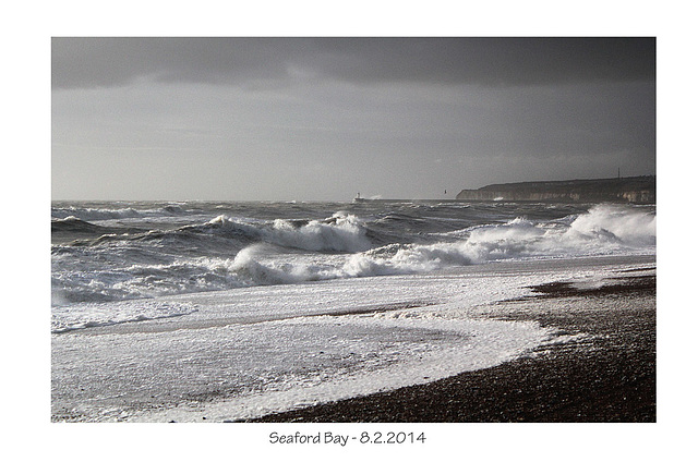 Not black and white!  - Seaford - 8.2.2014