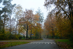 Bergweg in Rhenen